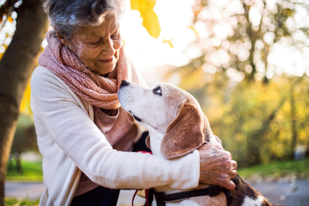 An elderly woman with dog in autumn nature. Senior woman on a walk.